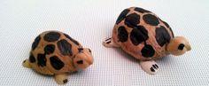 walnut-shell-turtle-craft-10