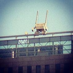 Perched robot