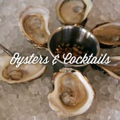 You need to get to this oyster bar before everyone else does