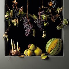 the style saloniste: Beauty and Seduction: New York photographer Paulette Tavormina creates ravishingly beautiful images of fruit, flowers, hidden creatures and memento mori with her new book, 'Seizing Beauty' just published by The Monacelli Press Amazing Food Photography, Fruit Photography, Still Life Photography, Mulch Around Trees, Lawn Soil, Planting Marigolds, Fruits Images, Uses For Coffee Grounds, New York Photographers