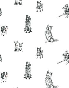 Wallshoppe's removable wallpaper panels are sustainably made from nontoxic materials. Our peel and stick removable wallpaper is easy to install and remove! Dog Wallpaper, Wallpaper Paste, Wallpaper Panels, White Wallpaper, Animal Wallpaper, Adhesive Wallpaper, Peel And Stick Wallpaper, Pattern Wallpaper, Dog Room Decor
