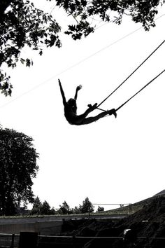 Flying trapeze into freedom. If I weren't afraid of heights, i would so do this. is that how you spell heights?