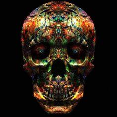Colorful Skull Illustration | JYCTY