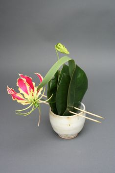 A japanese tea bowl with magnolia leaves, bamboo skewers, gloriosa lillies, and a cattail leaf