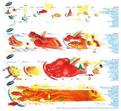 朝日新聞社『週刊朝日百科 世界のたべもの』136号 1983 「味覚地図」taste map