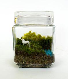 Licorne Spotting / / Moss Terrarium Par MossLoveTerrariums Sur Etsy, $38.00