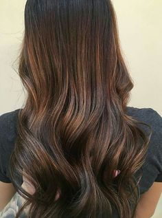 Beautiful brown sombre