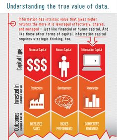 Infographics - Understanding Your Information Capital