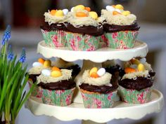 Påskens sötaste cupcakes | Recept.nu