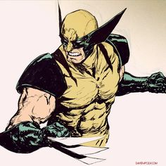 Wolverine by Dave Rapoza