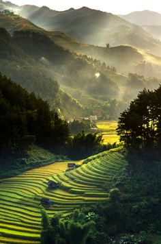 Top view of Rice terraced fields on Mu Cang Chai District, YenBai province, Northwest Vietnam Vietnam Voyage, Vietnam Travel, Asia Travel, Nature Pictures, Beautiful Pictures, Landscape Photography, Nature Photography, Jolie Photo, Beautiful Places In The World