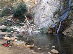 On the trail: Sturtevant Falls | Path & Paw