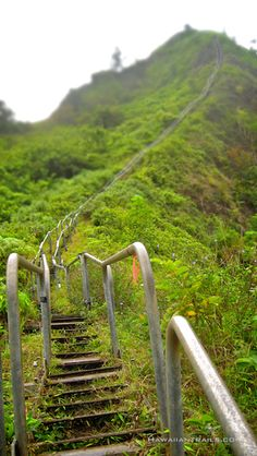 haiku stairs - Hawaii. On my bucket list to climb these. They're technically marked off due to danger but people go all the time anyway