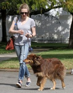 amanda seyfried dogs photos | Les Miserables' actress Amanda Seyfried out and about with her dog ...