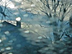 Le matin glacé Habille les arbres creux D'étincelles bleues.Photo M. christine Grimard