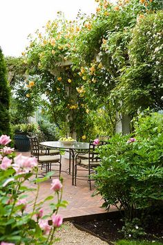 {traditional home} - lovely eating space on patio, surrounded by trees, bushes, and climbing vines