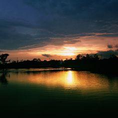 #louisiana #bayou Louisiana Bayou, Gulf Of Mexico, Natural Wonders, Real Life, Coast, Outdoors, Earth, In This Moment, Sunset