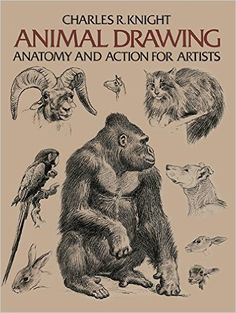 Animal Drawing: Anatomy and Action for Artists: Charles R. Knight: 0800759204267: Amazon.com: Books