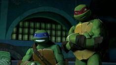 Read Meeting the boys, again from the story Tmnt x reader by MarvelTmntGirl (Marvel-Tmnt-Girl) with reads. Ninja Turtles Art, Teenage Mutant Ninja Turtles, Turtle Facts, Tmnt Girls, Boys, Leonardo Tmnt, Naruto, Tmnt 2012, Cartoon Crossovers