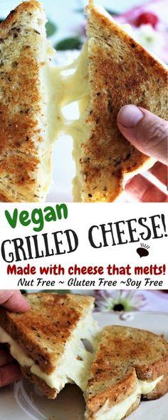 Vegan grilled cheeze