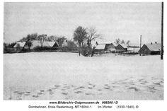Dombehmen, im Winter