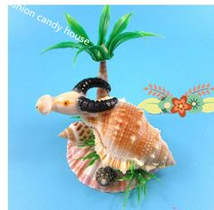 02 Natural conch shells ornaments small gift Home decoration mini  animal handicraft decoration-in Natural Crafts from Home, Kitchen & Garden on Aliexpress.com | Alibaba Group