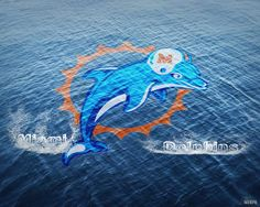 We are the Miami Dolphins!