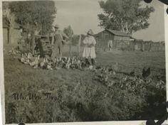 Vintage - family farming