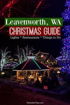2021 Washington Christmas Bazaar 190 Let There Be Light Ideas In 2021 Christmas Lights Holiday Lights Display Holiday Lights
