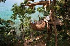 Restaurant-In-Thailand-That-Allows-You-To-Gaze-Upon-The-Jungle7.jpg (630×419)