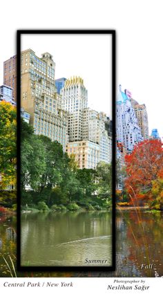 two season in same pic. #Central Park