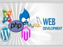 Web Programming. http://www.paramwebs.com/web-programming
