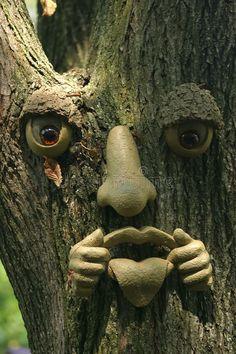 A fake face on a tree , Outdoor Trees, Outdoor Art, Garden Deco, Garden Art, Fairy Doors On Trees, Tree People, Landscaping Near Me, Antler Art, Tree Faces
