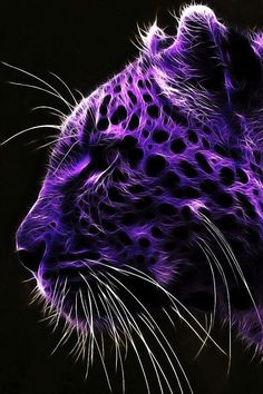 [640x960] IPhone wallpaper of a majestic purple cheetah/Jaguar (not good with identifying cat species).