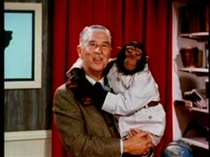 "Mutual of Omaha's Wild Kingdom with Marlin Perkins (I'll stay in the jeep while Jim takes a closer look."") and Jim Fowler. Watched it every Sunday night, followed by The Wonderful World of Disney."