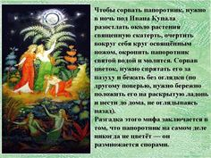 Ивана Купала обряды ритуалы заговоры - Магнитиза