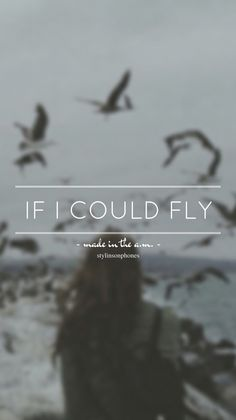 If I Could Fly • Made In The A.M. Lockscreen — ctto: @stylinsonphones