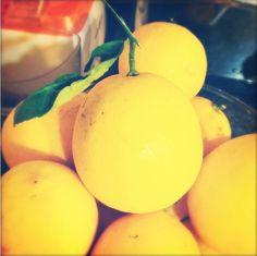 Only the best Meyer Lemons