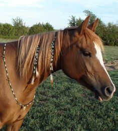 Horse Bling!  Show off your horse's personality with handmade horse jewelry by Nikki.  Green and white glass bead with gold leaf pendant rhythm beads and matching mane clip set.