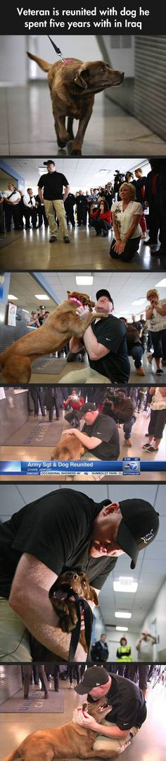 Dogs Never Forget The People They Love:  the dog was retired from the service and they let him adopt the dog. Happy Ending!