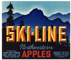 SKI LINE Vintage Yakima Washington Apple Crate Label