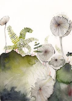 Maidenhair and Mushrooms print