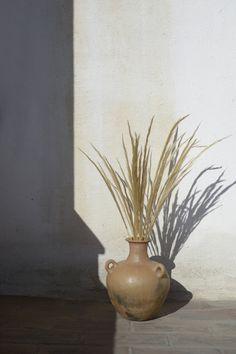 "Still Life Photography, ""Sunset Ikebana - Limited Edition 1 of Wabi Sabi, Hippie Stil, Parasols, Foto Art, Foliage Plants, Mediterranean Style, Still Life Photography, Ikebana, Beige Aesthetic"