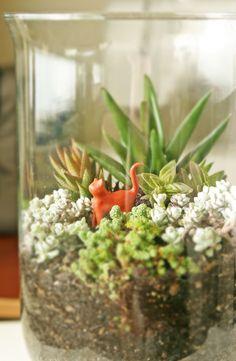 Succulent Terrarium..I love that there's a Little Steve inside :)