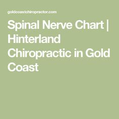 Spinal Nerve Chart | Hinterland Chiropractic in Gold Coast