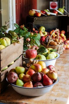 Local is Lovely harvest Pracshop - heirloom apples, quinces and nuts