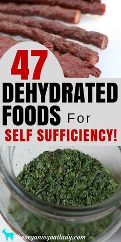 47 Dehydrated Foods For Self Sufficiency! Survival Skills, Frugal and Self Suffi. 47 Dehydrated Foods For Self Sufficiency! Survival Skills, Frugal and Self Sufficient Living, Food Dehydrator Recipes, Preserving Food Emergency Food, Survival Food, Survival Skills, Survival Tips, Urban Survival, Wilderness Survival, Outdoor Survival, Emergency Preparedness, Canning Food Preservation