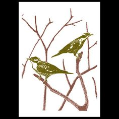 Two Cuckoos - A3 poster print - from a linocut - green and brown via James Green, artist on Etsy