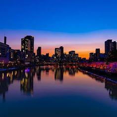 StudioFuntas(@studiofuntas) • Instagram写真と動画 Osaka, New York Skyline, Travel, Instagram, Viajes, Destinations, Traveling, Trips
