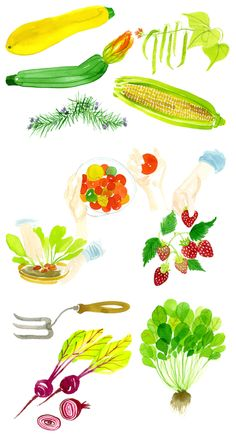 Fruit and veggies by Emily Robertson